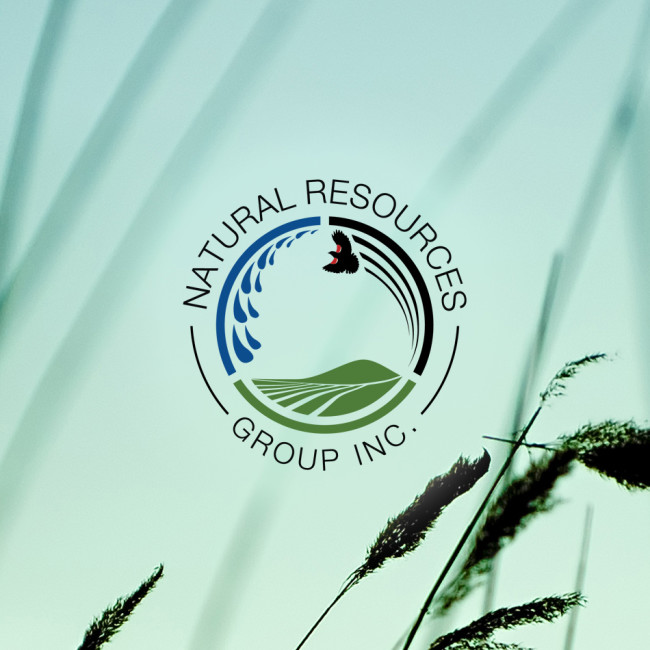 Natural Resources Group Inc.
